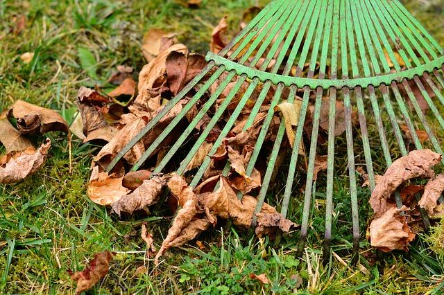 listí, hrábě, úklid trávníku